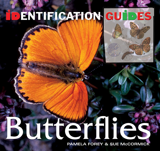 Cover image: Butterflies