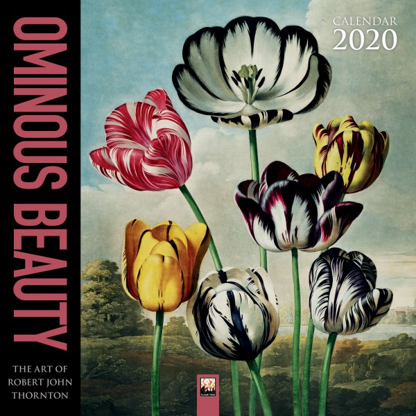 Cover image: Ominous Beauty - The Art of Robert John Thornton Wall Calendar 2020 (Art Calendar)