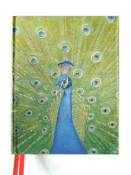 Cover image: Peacock in Blue and Green (Blank Sketch Book)
