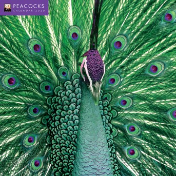 Peacocks Wall Calendar 2020 (Art Calendar)